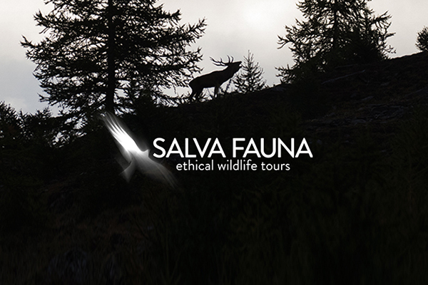 project_salvafauna copie